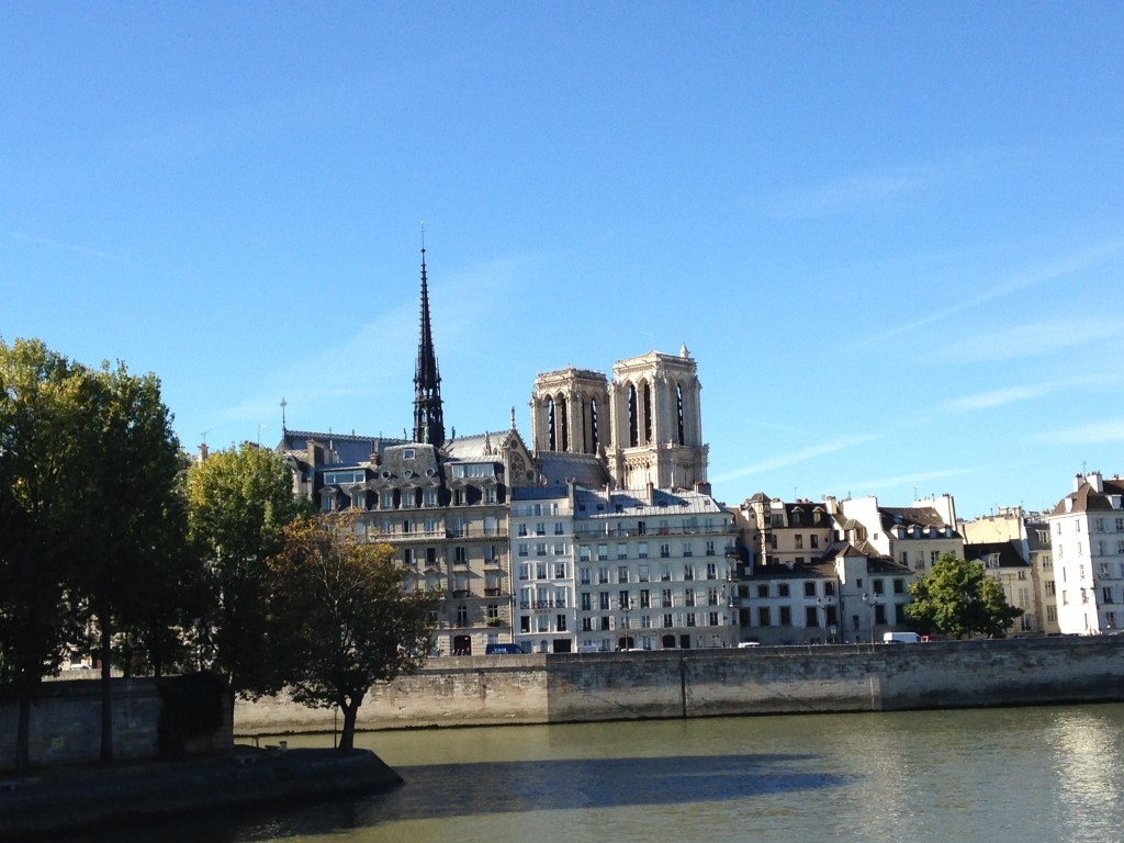 View of the Ile de la Cité from the Rive Droite
