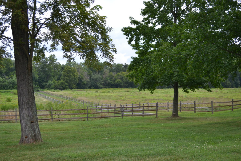 The view of the extensive fields from the front lawn.