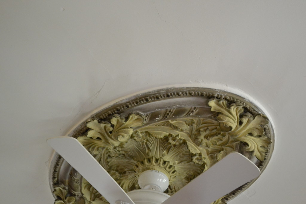 Detail of the chandelier cornice in the ballroom. Sadly, the crystal chandelier that once hung there is gone.