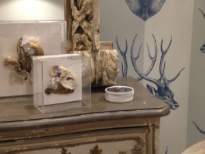hot trends antlers shells