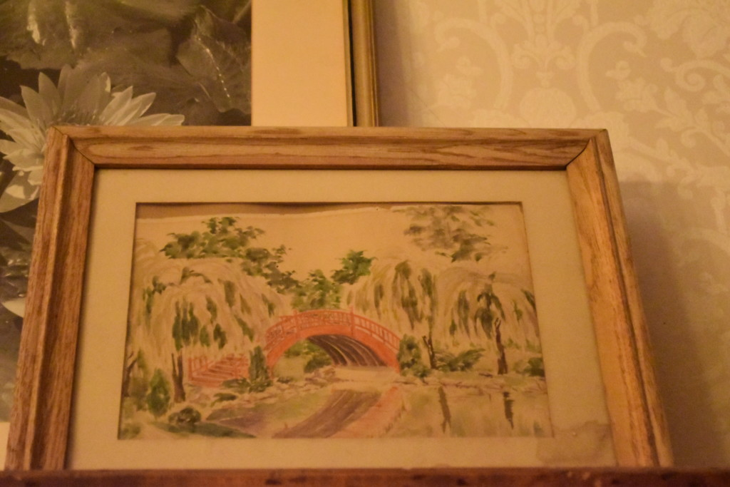 huntingdon gardens, international water lily symposium, vintage watercolor